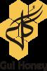 Software Development Company - logo
